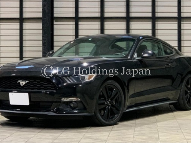 2016 FORD MUSTANG FUMEI